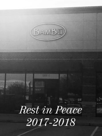 A Farewell to Bambu