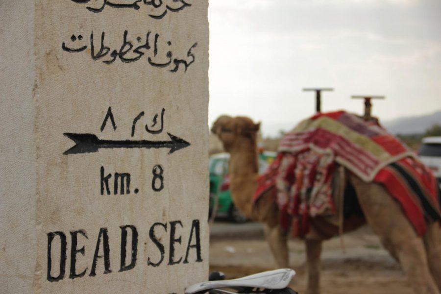 Arabic%3A+A+Journey